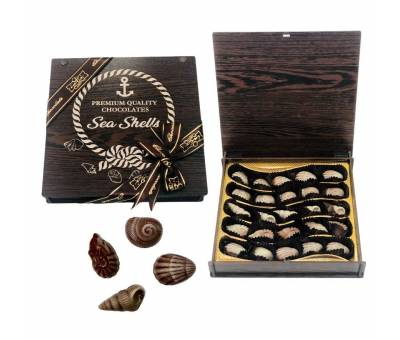 Sea Shells Premium Chocolate
